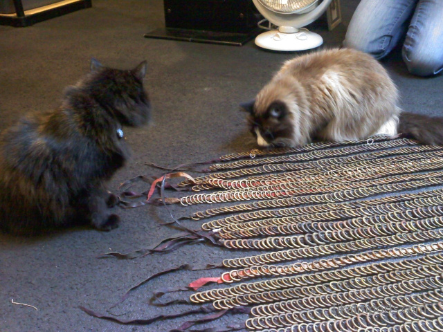 Office kitties Bodhi and Poppy inspecting some antique African brass