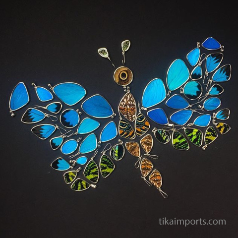 shimmerwing jewelry laid out in the shape of a butterfly