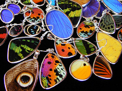natural butterfly wing and sterling silver Shimmerwing Closeout jewelry