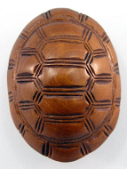 top view of handcarved boxwood netsuke of turtle