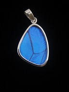 Small Blue Morpho (morpho didius) Shimmerwing pendant with butterfly set in sterling silver