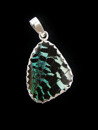 Small aquamarine and black (Urania leilus) shimmerwing pendant with butterfly set in sterling silver