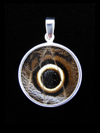 Medium Owl Eye (Caligo idomeneus) Shimmerwing pendant with butterfly set in sterling silver