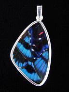 Blue Flash (Ancyluris Meliboeus) Shimmerwing Pendant set in sterling silver