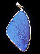 X-Large Blue Morpho Wing (Morpho didius) Shimmerwing pendant with butterfly set in sterling silver