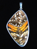 X-Large Silverspangled Longwing (Dione juno) Shimmerwing Pendant