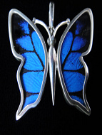 Small Blue & Black (Papilio ulysses) Shimmerwing Pendant set in sterling silver butterfly design