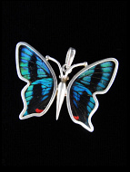 Small Blue Flash (Ancyluris Meliboeus) Shimmerwing Pendant set in sterling silver butterfly design