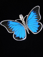Large Blue & Black (Papilio ulysses) Shimmerwing Pendant set in sterling silver butterfly design
