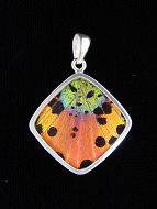 Rainbow Sunset (Urania rhipheus) Diamond Shimmerwing Pendant set in sterling silver