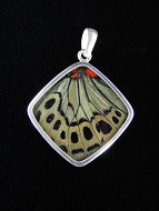 Sage Green (Callithea Philotima) Diamond Shimmerwing Pendant set in sterling silver