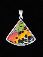 Rainbow Sunset (Urania rhipheus) Fan Shimmerwing Pendant set in sterling silver