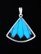 Blue & Black (Papilio ulysses) Fan Shimmerwing Pendant set in sterling silver