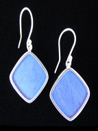 Blue Morpho (Morpho didius) Diamond Shimmerwing Earrings set in sterling silver