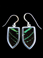 Medium Green and Black Shield (Urania leilus) Shimmerwing earrings with butterfly set in sterling silver
