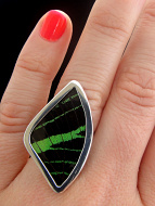 Medium Green & Black (Urania leilus) Fan Shimmerwing ring with sterling silver setting, viewed on model