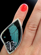 Large Fancy Teal & Black (Papilio nireus) Fan Shimmerwing ring with sterling silver setting