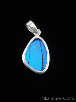 Tiny Blue Morpho (morpho didius) Shimmerwing pendant with butterfly set in sterling silver