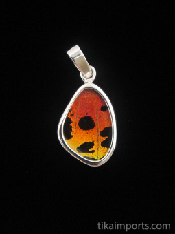 Tiny Hot Sunset (Urania rhipheus) Shimmerwing pendant with butterfly set in sterling silver