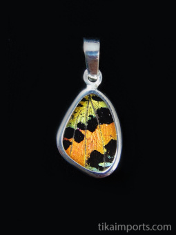 Tiny Rainbow Sunset (Urania rhipheus) Shimmerwing pendant with butterfly set in sterling silver