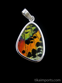 Small Rainbow Sunset (Urania rhipheus) Shimmerwing pendant with butterfly set in sterling silver