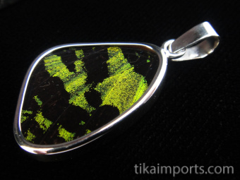 Small green and black (Urania rhipheus) shimmerwing pendant with butterfly set in sterling silver