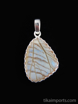 Reverse view of Small Pearl Blue (Morpho sulkowski) Shimmerwing pendant with butterfly set in sterling silver
