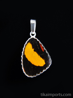 Reverse view of Small Speckled Numberwing (Callicore aegina) Shimmerwing Pendant