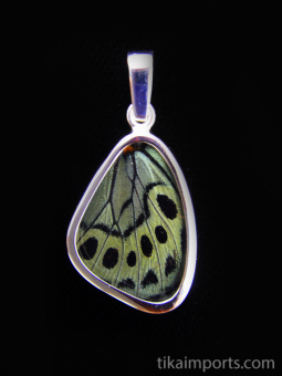 Small Sage Green (Callithea Philotima) Shimmerwing pendant with butterfly set in sterling silver