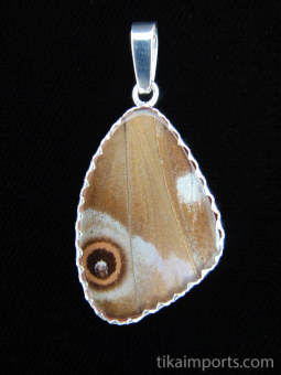Reverse of medium Blue Morpho (morpho didius) Shimmerwing pendant with butterfly set in sterling silver