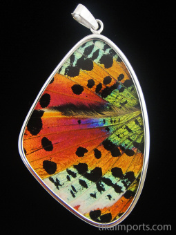 XXL Rainbow Sunset Wing (Urania rhipheus) Shimmerwing pendant with butterfly set in sterling silver