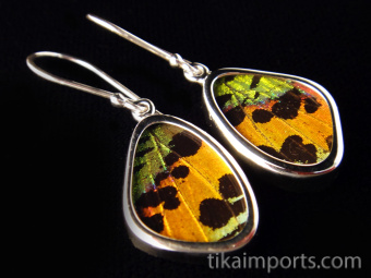 Tiny Rainbow Sunset (Urania rhipheus) Shimmerwing earrings with butterfly set in sterling silver