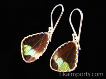Reverse view of Tiny Rainbow Sunset (Urania rhipheus) Shimmerwing earrings with butterfly set in sterling silver