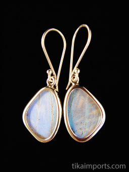 Tiny Pearl Blue (Morpho sulkowski) Shimmerwing earrings with butterfly set in sterling silver