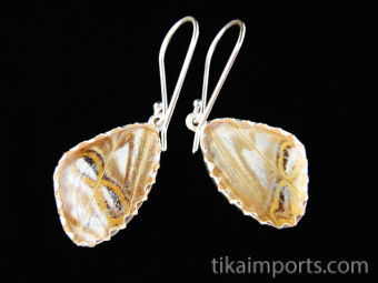 Reverse view of Tiny Pearl Blue (Morpho sulkowski) Shimmerwing earrings with butterfly set in sterling silver