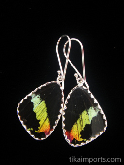 reverse of small Shimmerwing earrings