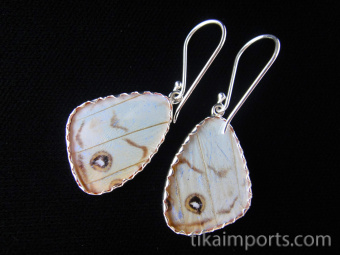 Reverse of Small Pearl Blue (Morpho sulkowski) Shimmerwing earrings with butterfly set in sterling silver