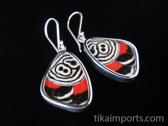 """Small """"88"""" (Diaethria neglecta) Shimmerwing earrings with butterfly set in sterling silver"""