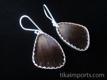 """Reverse of Small """"88"""" (Diaethria neglecta) Shimmerwing earrings with butterfly set in sterling silver"""