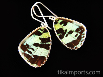 Reverse view of Small Green & Black Wing (Urania leilus) Shimmerwing earrings with butterfly set in sterling silver