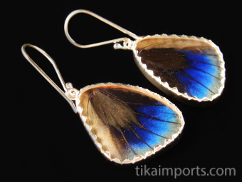 Reverse view of Small Sage Green (Callithea Philotima) Shimmerwing earrings with butterfly set in sterling silver