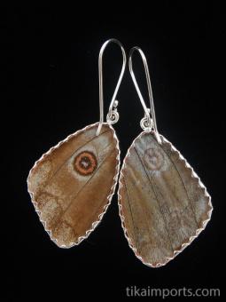 reverse of medium Shimmerwing earrings