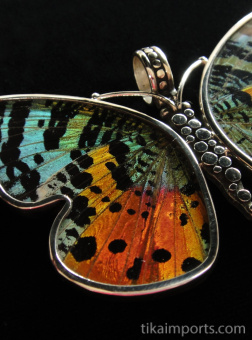 Large Rainbow Sunset (Urania rhipheus) Shimmerwing Pendant set in sterling silver butterfly design - closeup