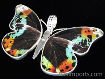 Large Rainbow Sunset (Urania rhipheus) Shimmerwing Pendant set in sterling silver butterfly design - reverse