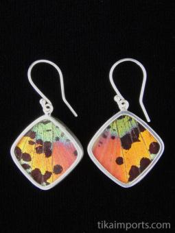 Rainbow Sunset (Urania rhipheus) Diamond Shimmerwing Earrings set in sterling silver