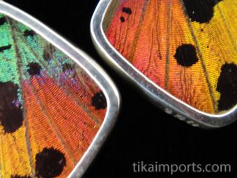 Rainbow Sunset (Urania rhipheus) Diamond Shimmerwing Earrings set in sterling silver - closeup