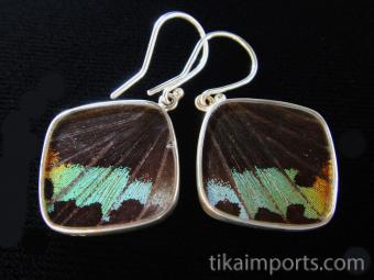 Rainbow Sunset (Urania rhipheus) Diamond Shimmerwing Earrings set in sterling silver - reverse