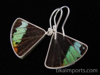 Rainbow Sunset (Urania rhipheus) Fan Shimmerwing Earrings - reverse