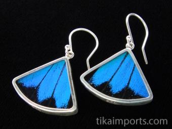 Blue & Black (Papilio ulysses) Fan Shimmerwing Earrings set in sterling silver