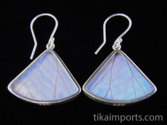 Pearl Blue Morpho (Morpho sulkowski) Fan Shimmerwing Earrings